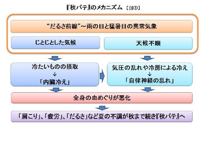 """""""秋バテ""""が増加中、対策は「焼酎のお湯割り」と「入浴」!? 日経トレンディネット"""