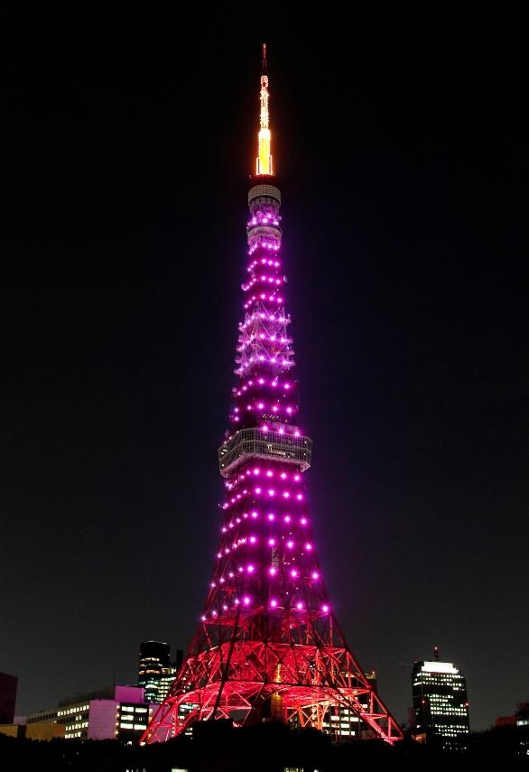 まさに「愛のステップアップ!」バレンタインの夜は夜景を見ながら東京タワーを階段で昇ろう!「ジャイアントカプリコ」や「ポッキー」の無料配布も行います! | 東京タワー TokyoTower オフィシャルホームページ