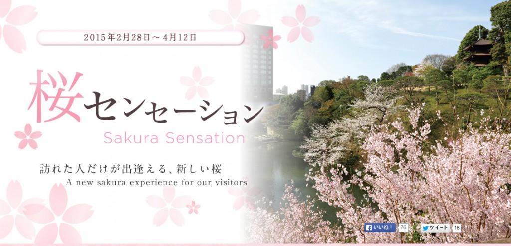 イベント&アクティビティ 桜センセーション 訪れた人だけが出逢える、新しい桜  東京のホテルならホテル椿山荘東京。_20150308