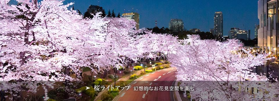 Midtown Blossom 2015 東京ミッドタウン