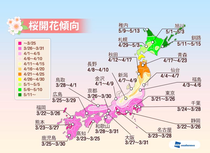 ウェザーニューズ2016年桜開花傾向全国