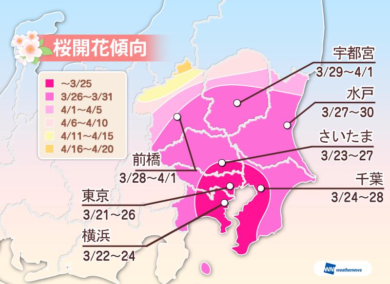 ウェザーニューズ2016年桜開花傾向関東