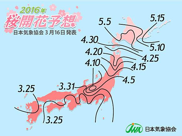 日本気象協会発表 3連休に桜開花!(日直予報士) - tenki.jp