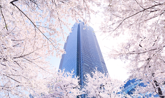 Midtown Blossom 2016 | 東京ミッドタウン