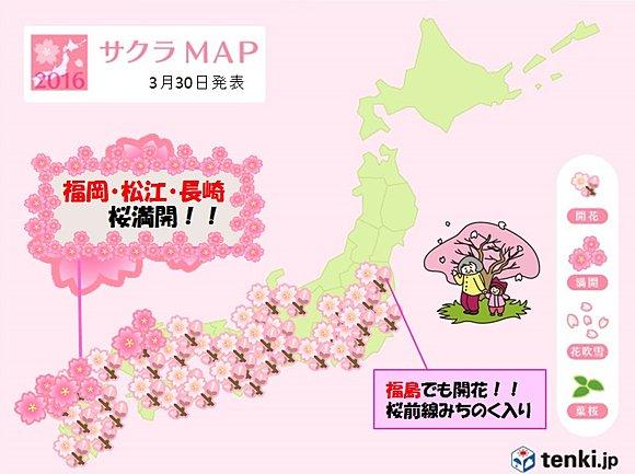 九州から桜見頃に 開花はみちのく入り(日直予報士) - tenki.jp