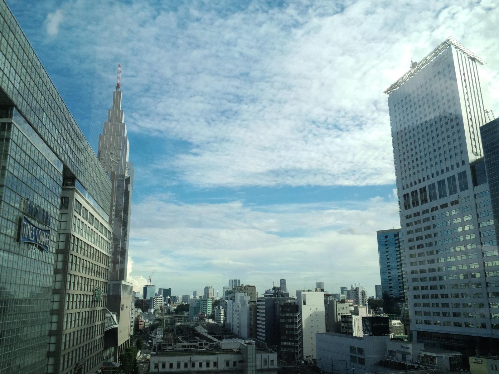 南新宿ニュウマン「6Fガーデン」からの景色