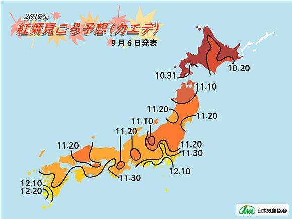 2016年紅葉の見ごろ 気象協会発表(日直予報士) - tenki.jp