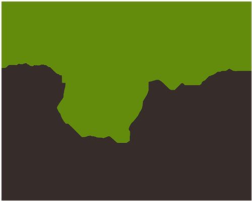 東京ピクニック 2016 | TOKYO PICNIC 2016