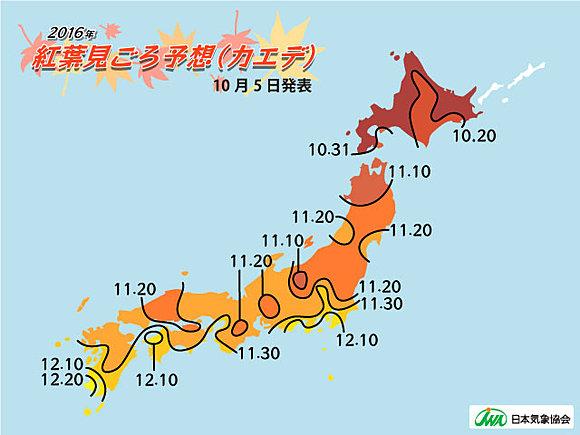第2回紅葉見ごろ予想 全国的に平年並(日直予報士) - tenki.jp