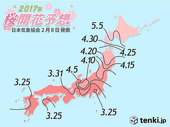 日本気象協会発表 第1回桜の開花予想(日直予報士) - tenki.jp
