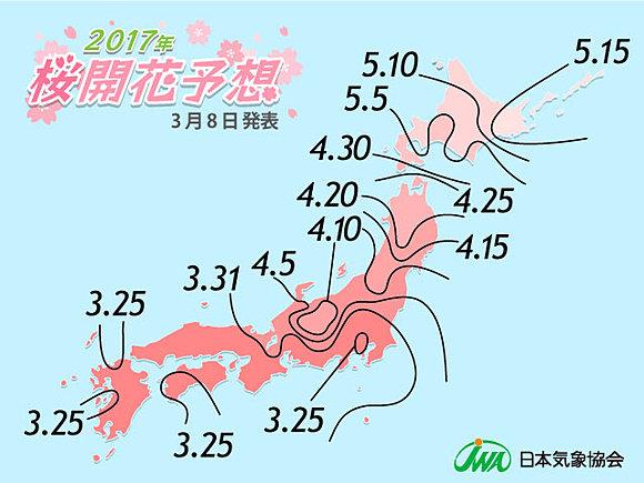 桜の開花あと2週間 日本気象協会発表(日直予報士) - tenki.jp
