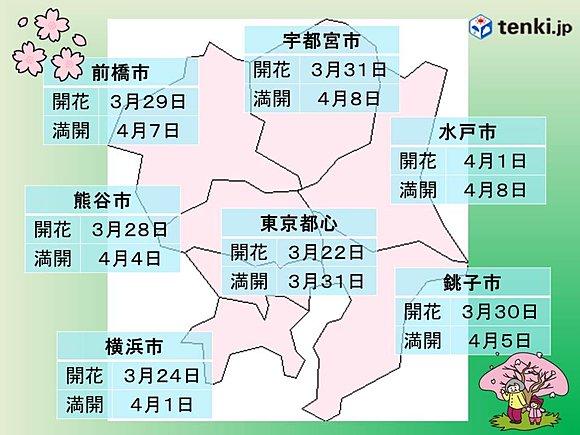 関東の桜 見頃はいつ?(日直予報士) - tenki.jp