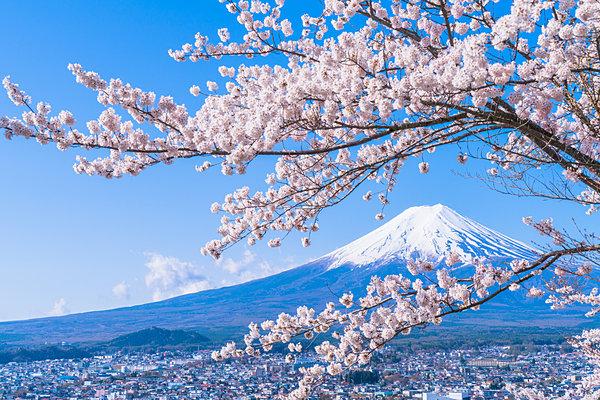 二十四節気「清明」。いよいよお花見本番へ!春季玲瓏・春満開の日本です(tenki.jpサプリ 2017年4月4日) - tenki.jp