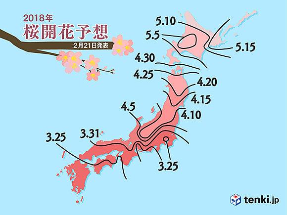 桜はいつ咲く? 日本気象協会予想(日直予報士) - tenki.jp