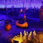 埼玉県比企郡滑川町にある国営武蔵丘陵森林公園「森のハロウィンナイト~ライトアップ&イルミネーション~」