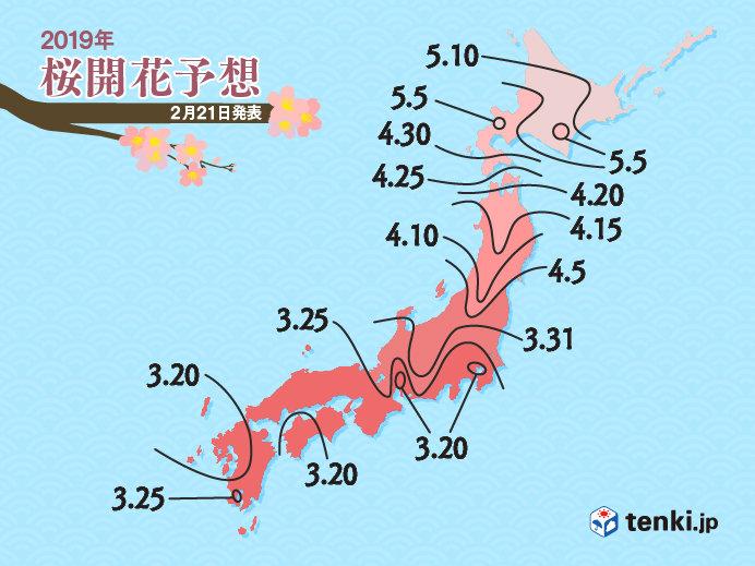 桜の開花予想が早まる 日本気象協会発表(日直予報士 2019年02月21日) - 日本気象協会 tenki.jp