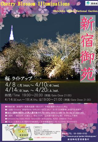 新宿御苑 桜ライトアップの実施について