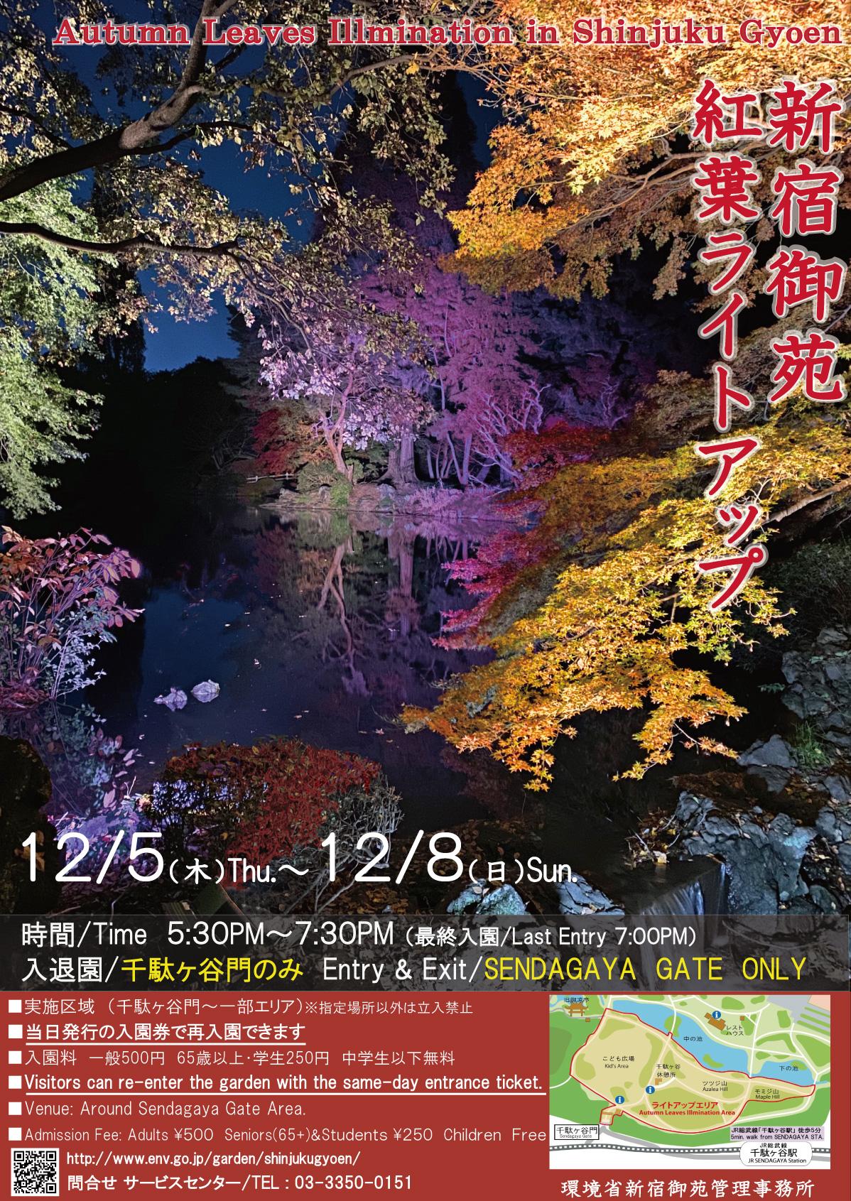 環境省_(お知らせ)紅葉ライトアップイベント 12月5日(木)~8日(日)