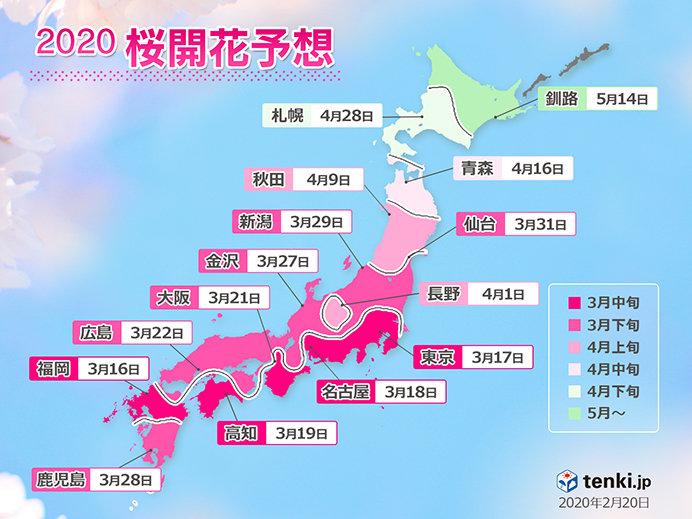 日本気象協会発表「桜開花予想」記録的な早さで開花か(日直予報士 2020年02月20日) - 日本気象協会 tenki.jp