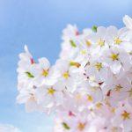 2020年3月17日は春の彼岸入りです。 | お天気.com